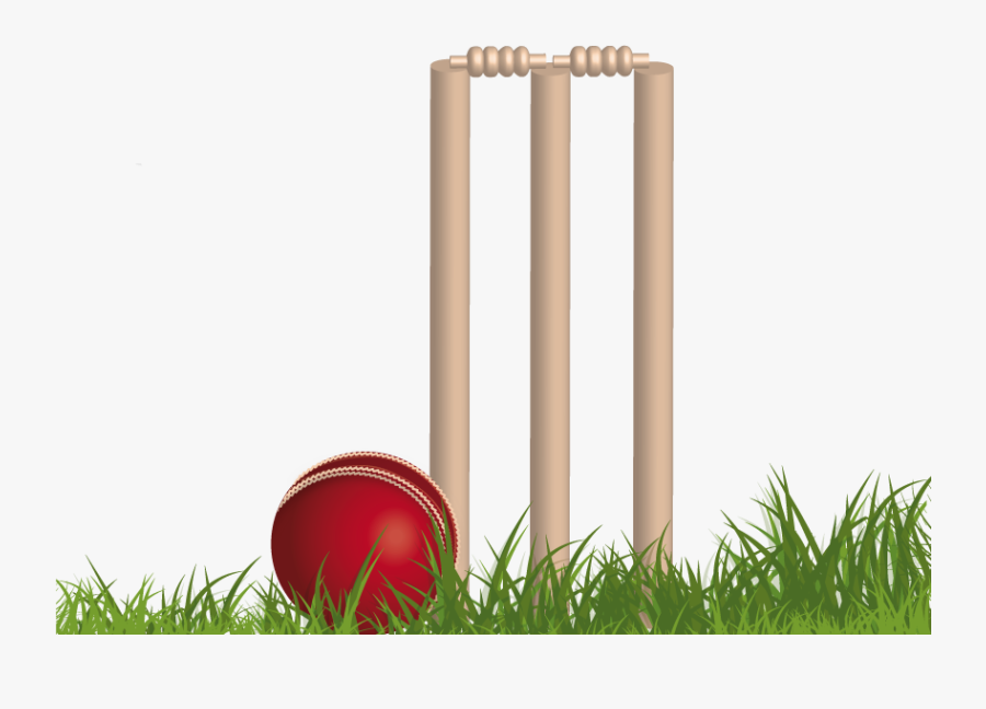 Cricket Clipart Cricket Stump.