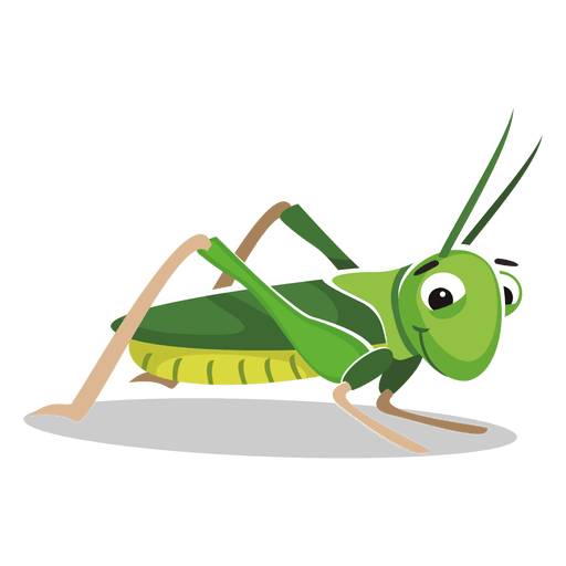 Grasshopper,Insect,Green,Cricket.