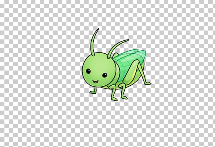 Grasshopper Insect Cricket Cuteness PNG, Clipart, Animals, Cartoon.