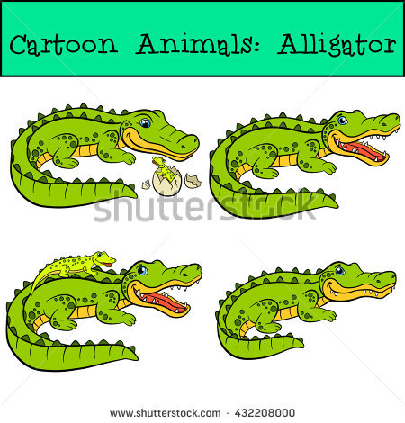 Alligator Stock Images, Royalty.
