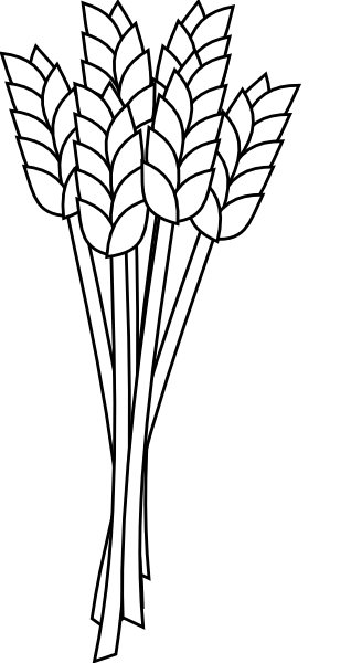 Wheat clip art.