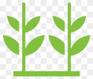Free PNG Crops Growing Clip Art Download.