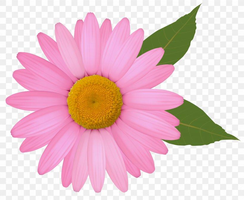 Common Daisy Clip Art, PNG, 6006x4941px, Common Daisy.