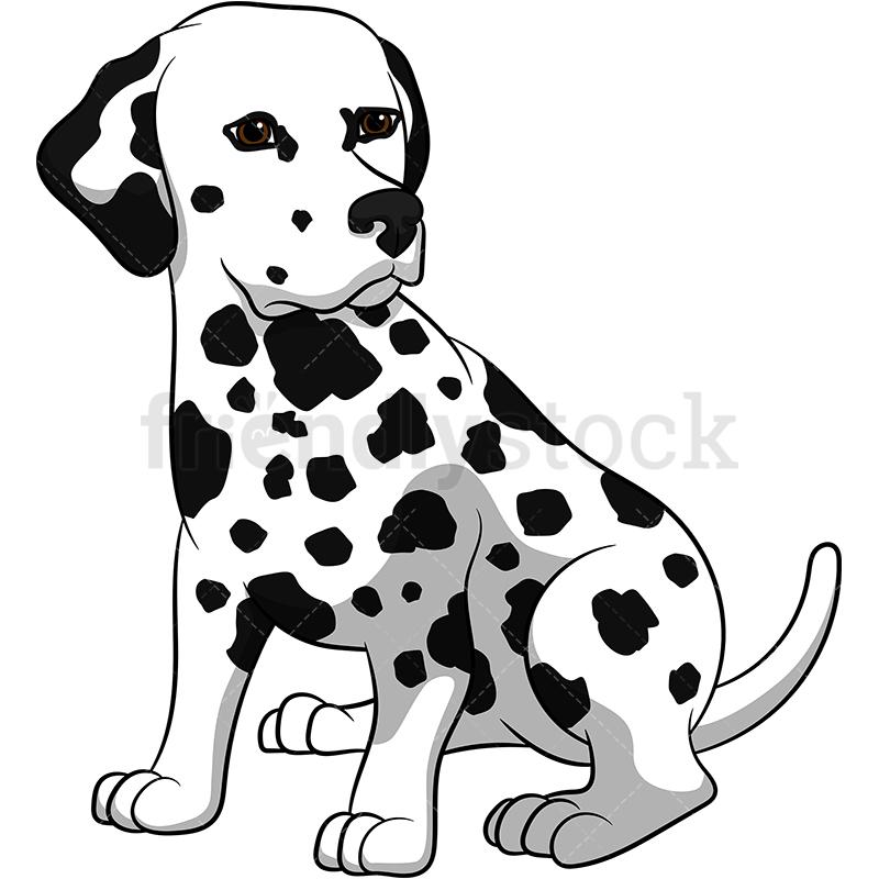 Cute Dalmatian Dog.