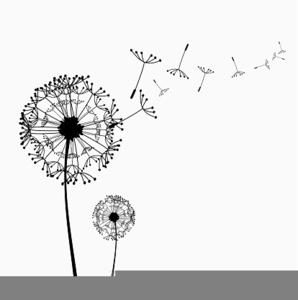 Free Clipart Dandelion Flower.