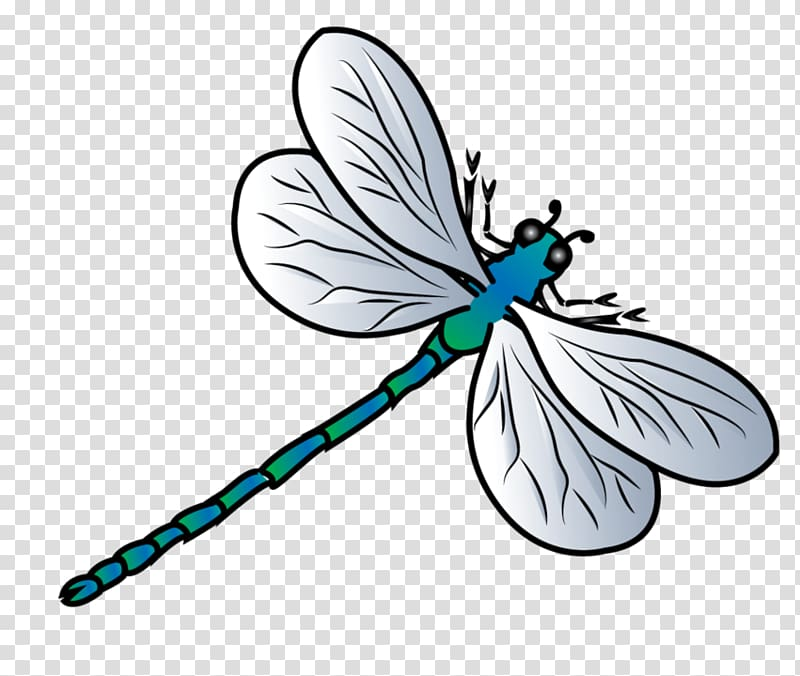 Butterfly Dragonfly , dragonfly transparent background PNG.