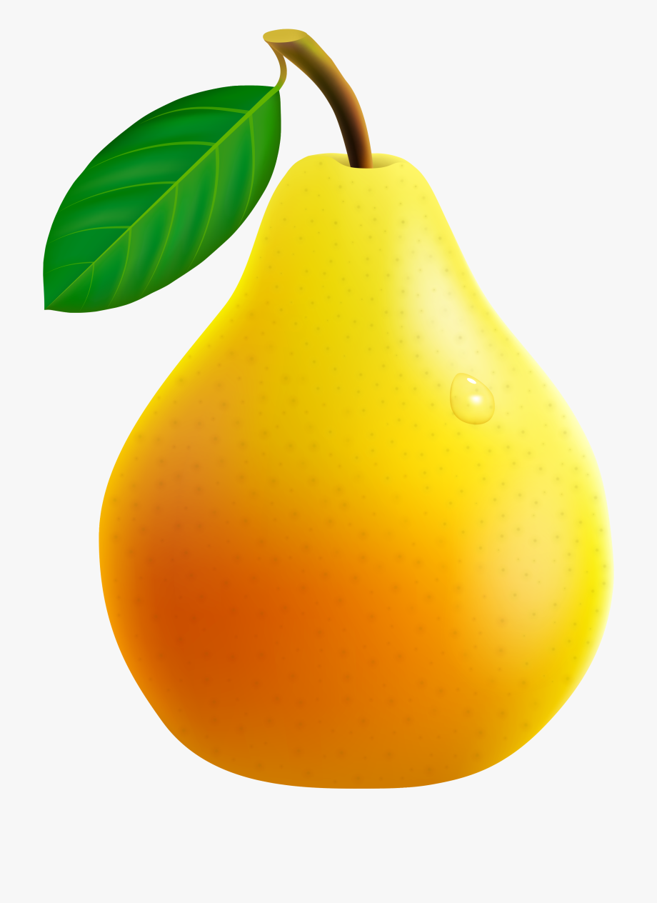 Vector Fruits Banner.