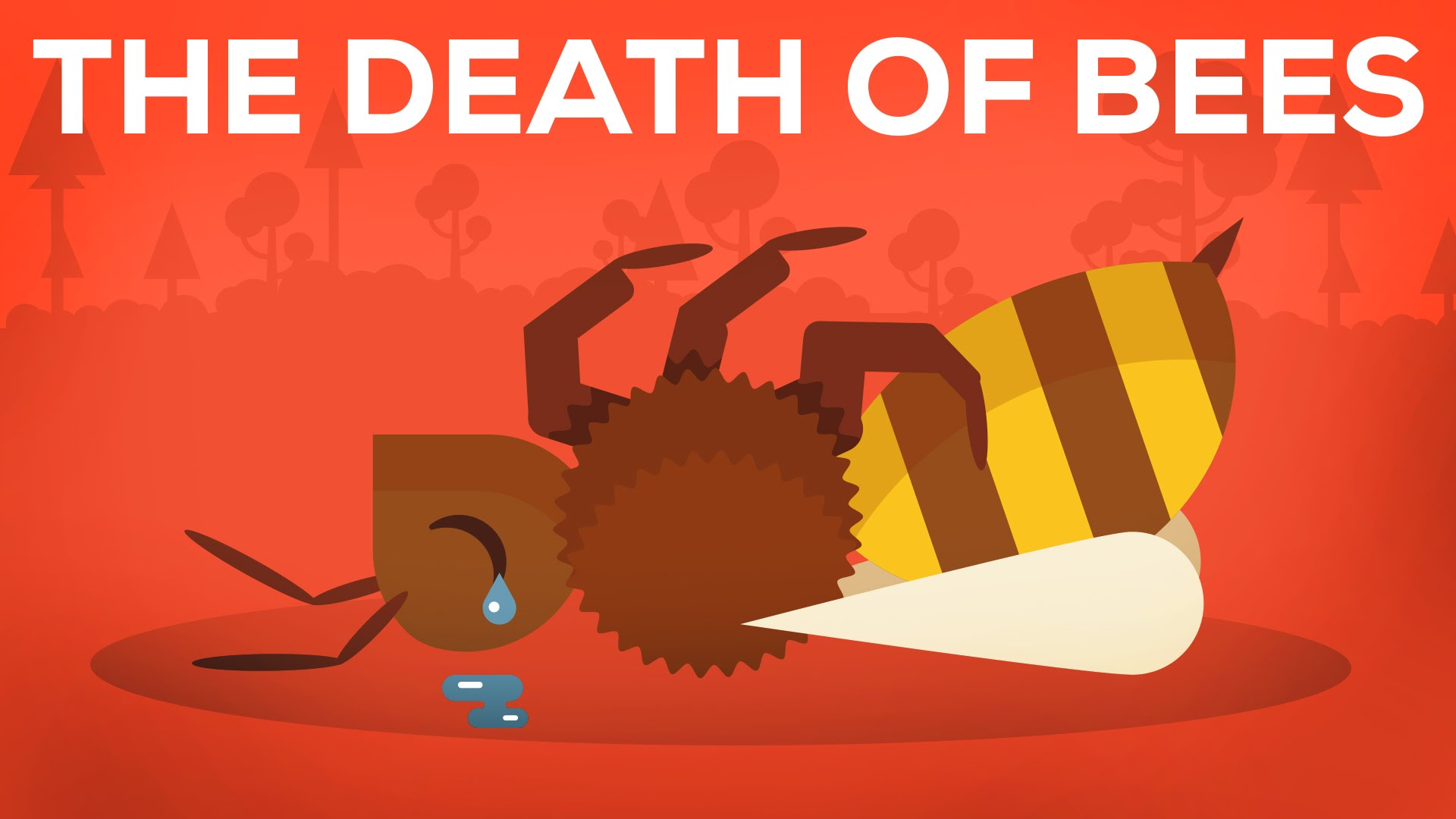 The Death Of Bees Explained.