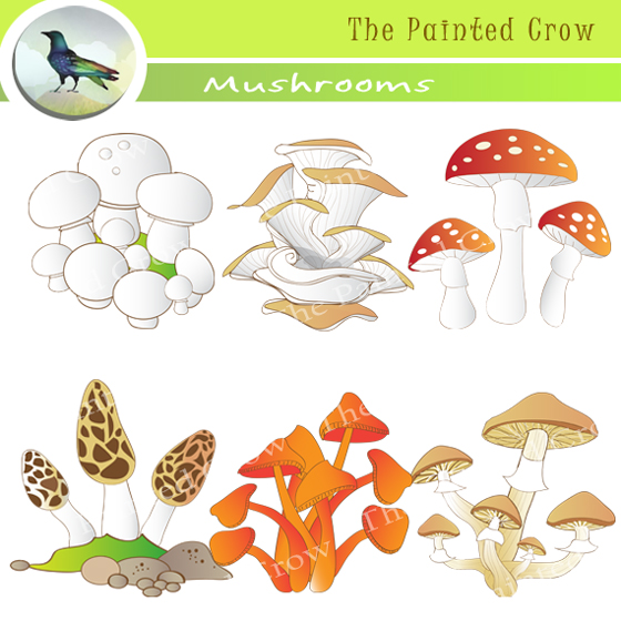 Decomposers clipart 3 » Clipart Station.