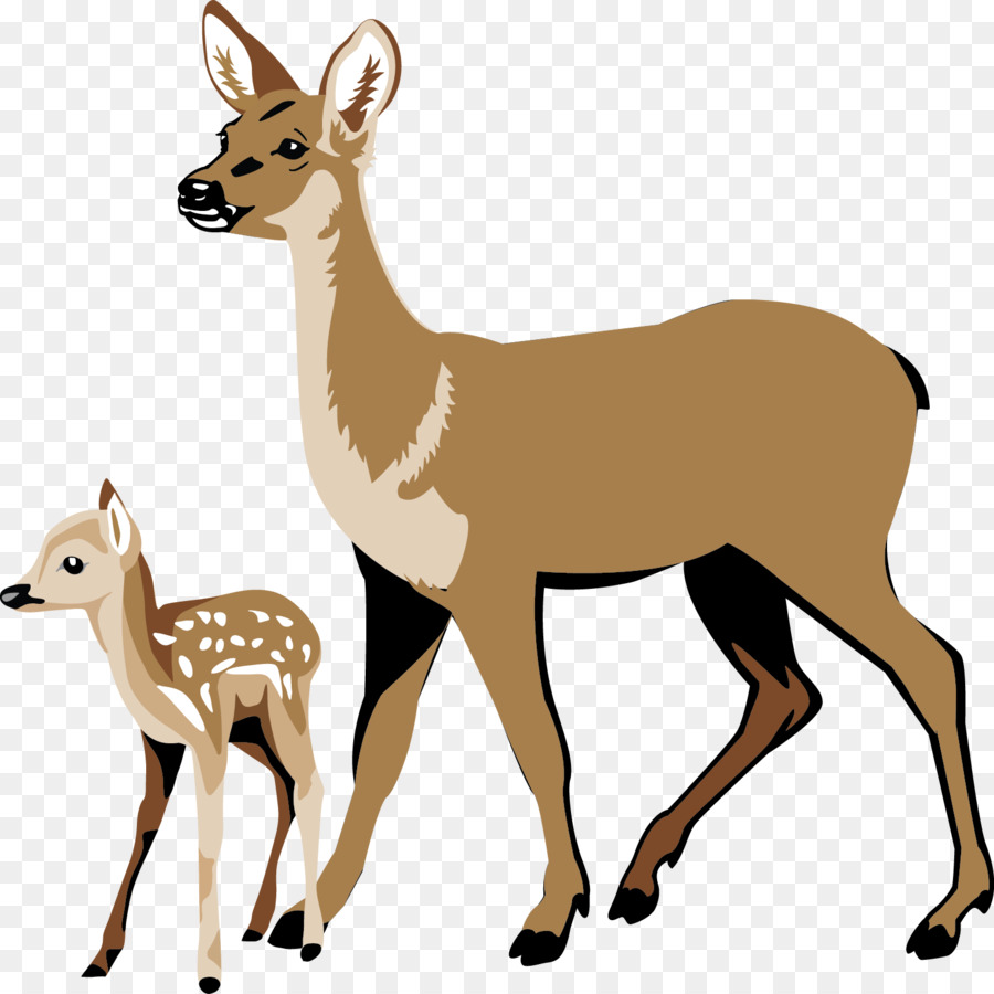 Animal Cartoon clipart.
