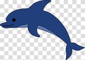 Delfin transparent background PNG cliparts free download.