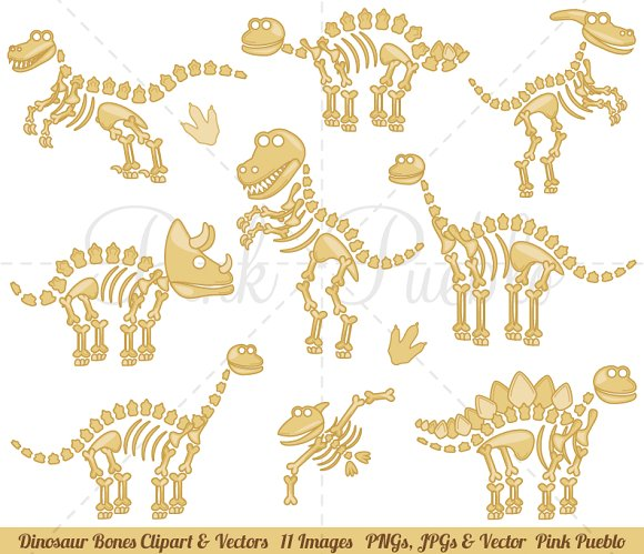 Dinosaur Fossils or Bones Clipart ~ Illustrations on Creative Market.