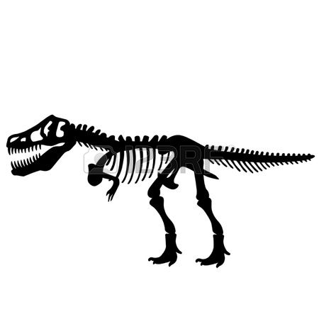 3,375 Dinosaur Fossil Stock Illustrations, Cliparts And Royalty.