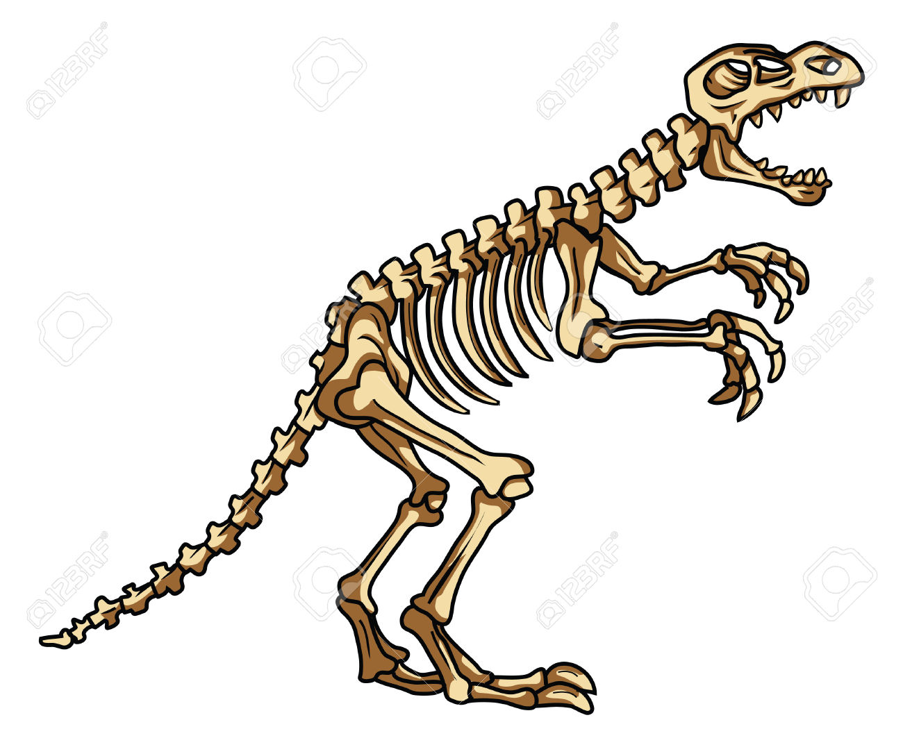 Dinosaur skeleton clipart 4 » Clipart Station.