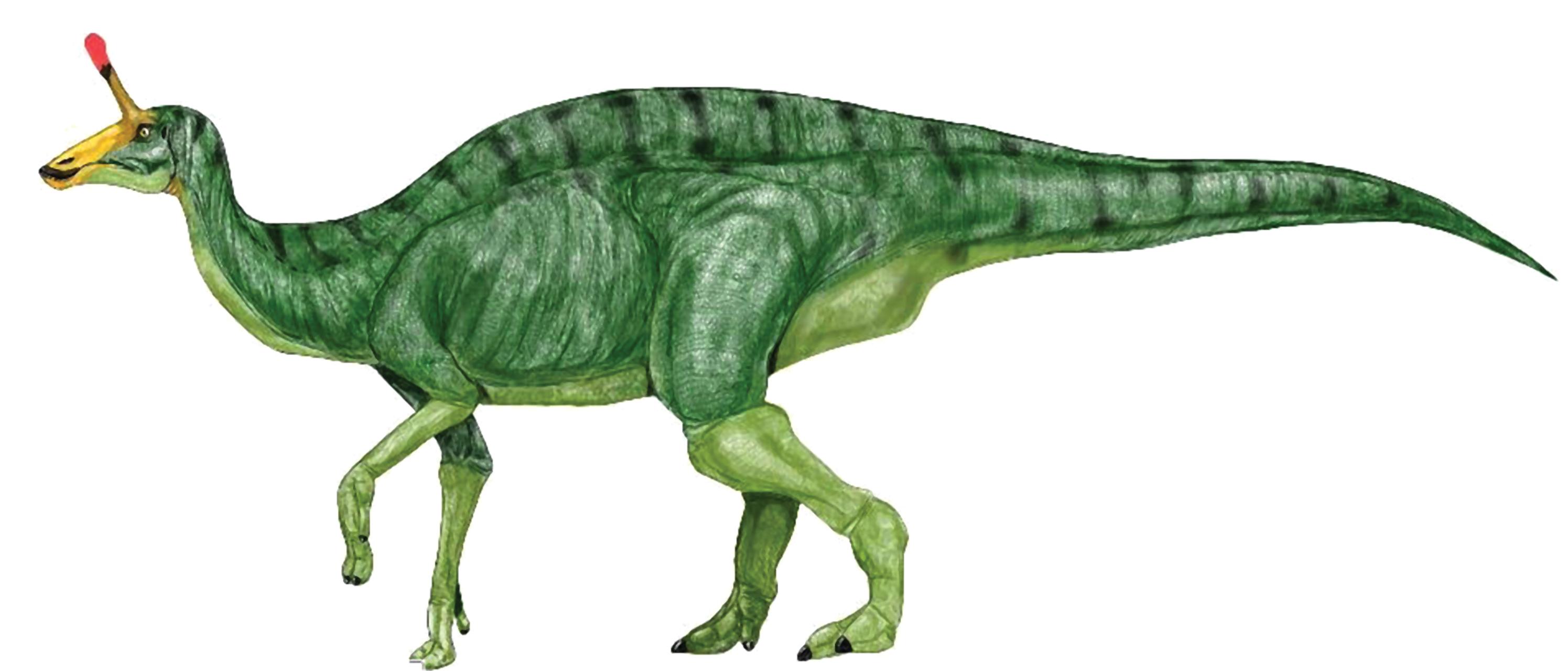 Dinosaurs Clip Art T Rex Eat.