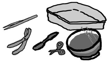 Dissection clipart 4 » Clipart Station.
