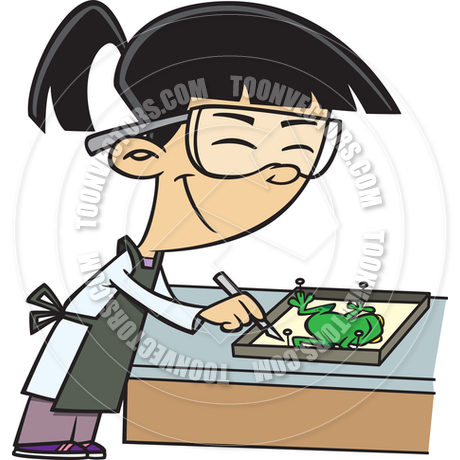 Dissection clipart 8 » Clipart Station.
