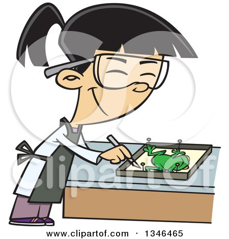 Dissection clipart 6 » Clipart Station.