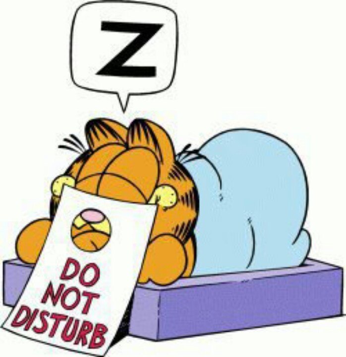 Free Do Not Disturb Clipart, Download Free Clip Art, Free.