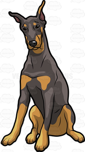 Doberman Dog Clipart.