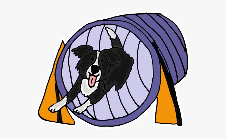 Border Collie Agility Cartoon , Free Transparent Clipart.