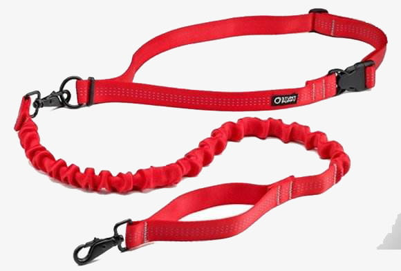 Red dog chain PNG clipart.