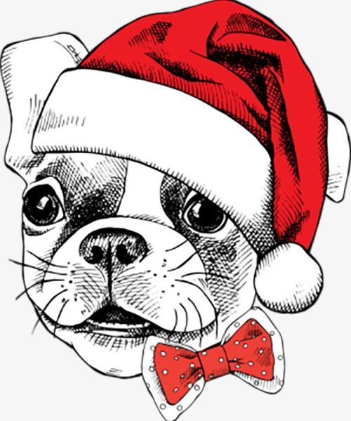 Celebrate Christmas Dog PNG, Clipart, Animal, Birthday.