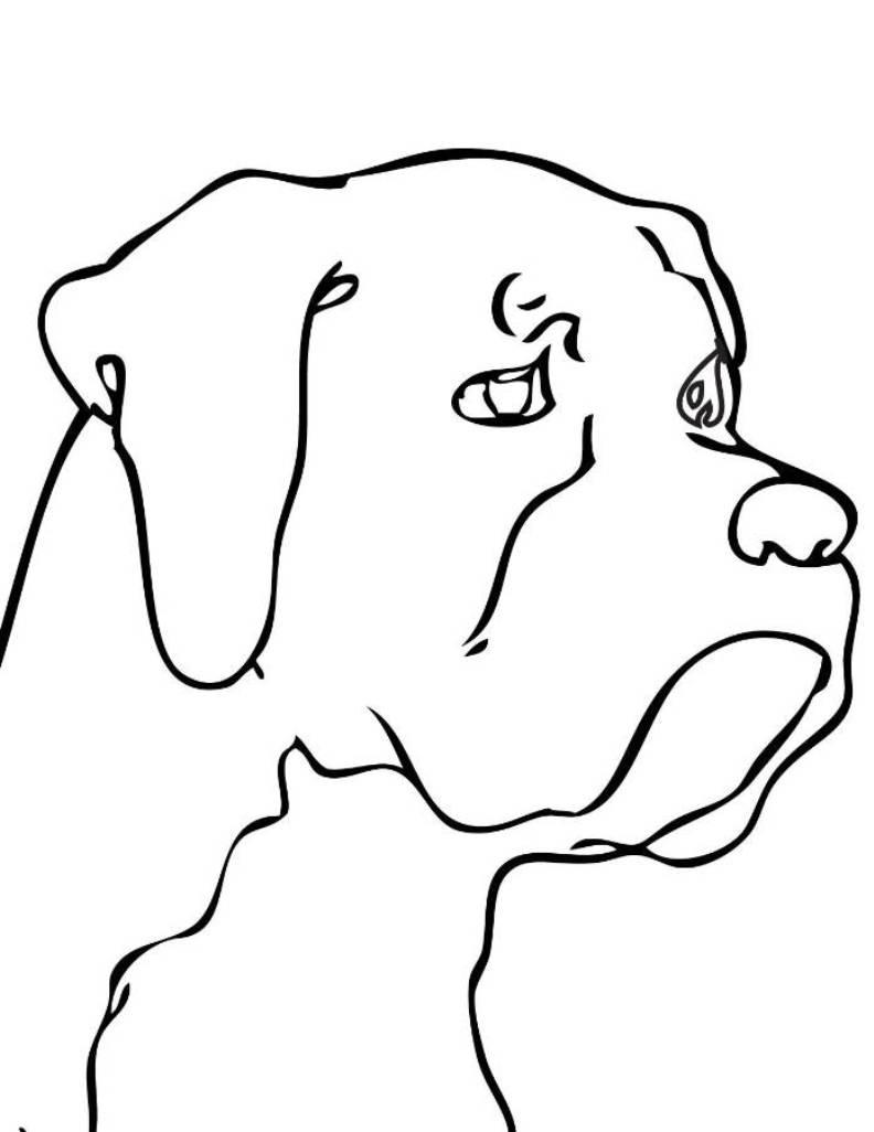 clipart dog head #8