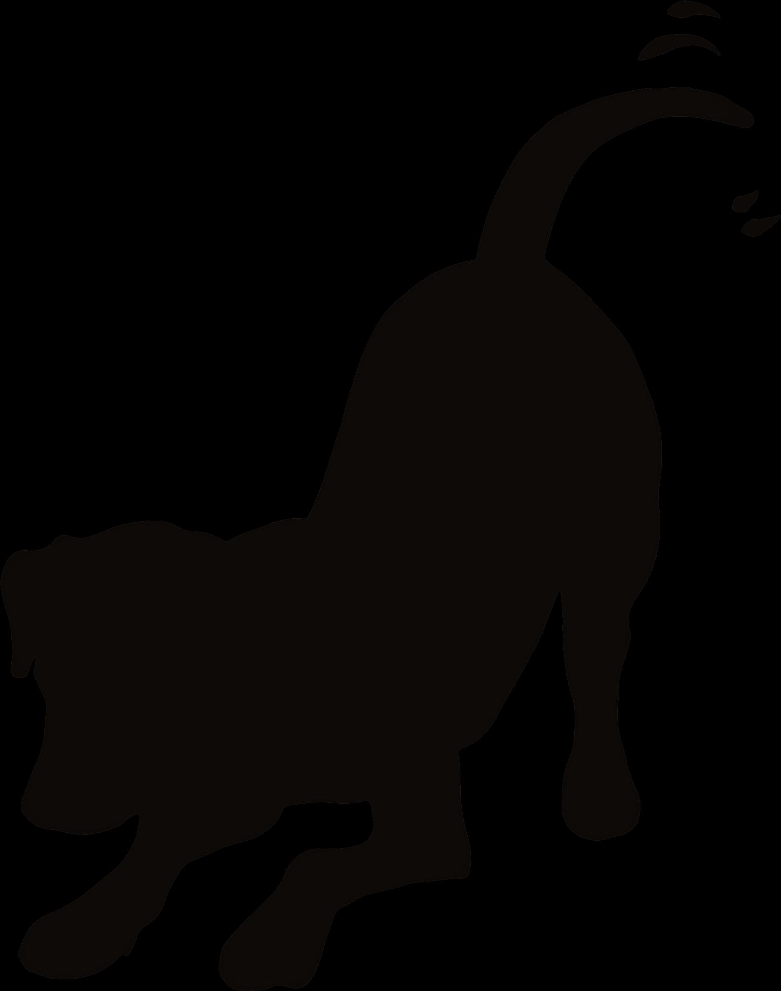 Pin Pet Tips On Dog Cat Clip Art Pet Graphics Pinterest.
