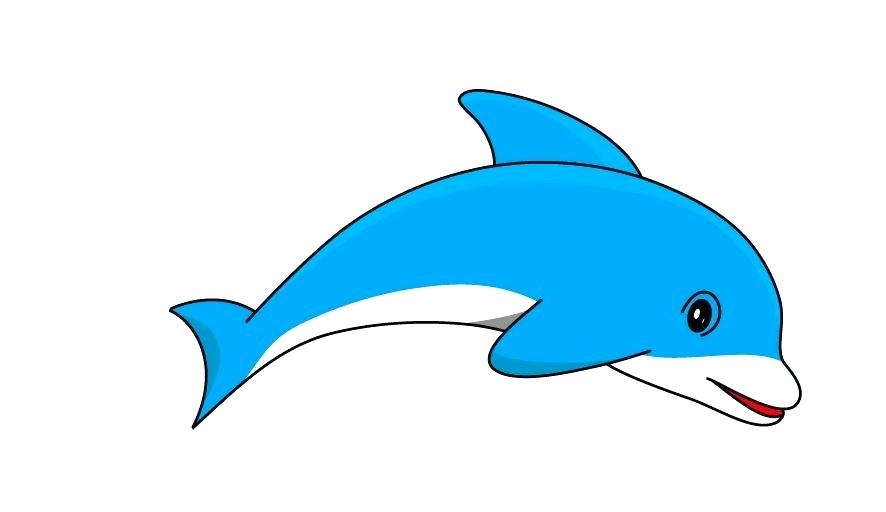 The best free Dolphin clipart images. Download from 358 free.