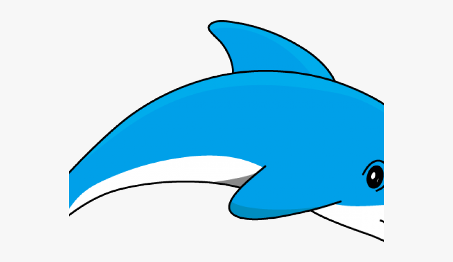 Dolphins Clipart Walking.