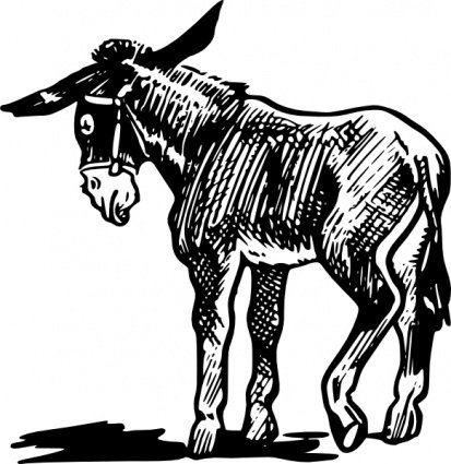 Free Donkey Outline In Black And White Clipart and Vector Graphics.
