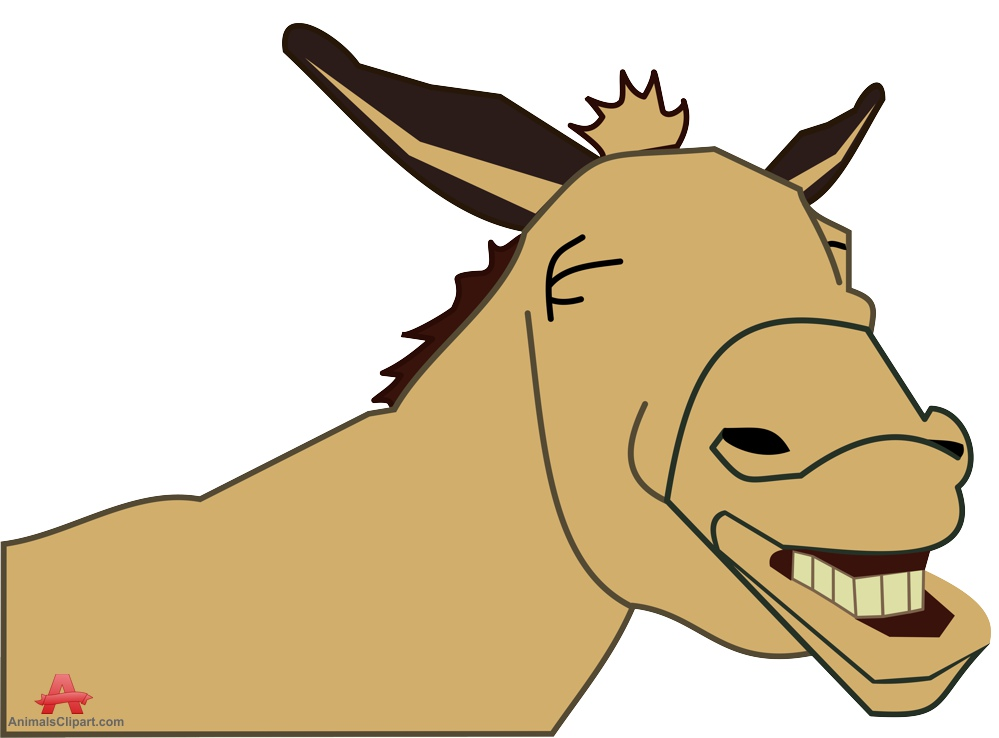 Laughing Donkey Face Portrait.