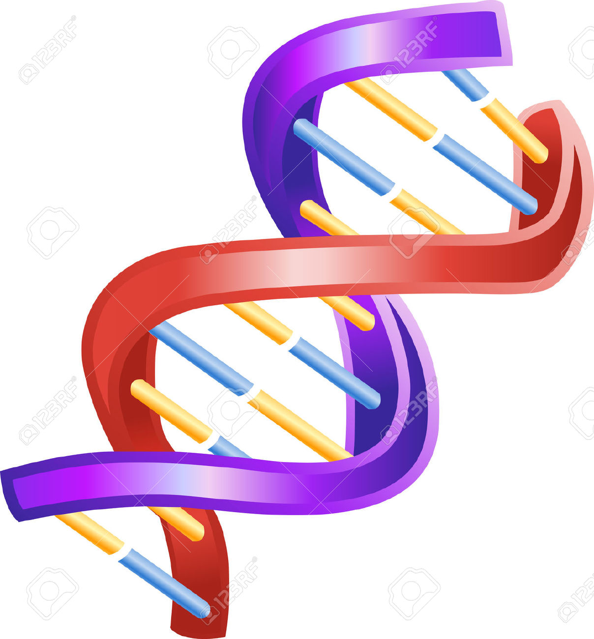 Biology clipart double helix, Biology double helix.