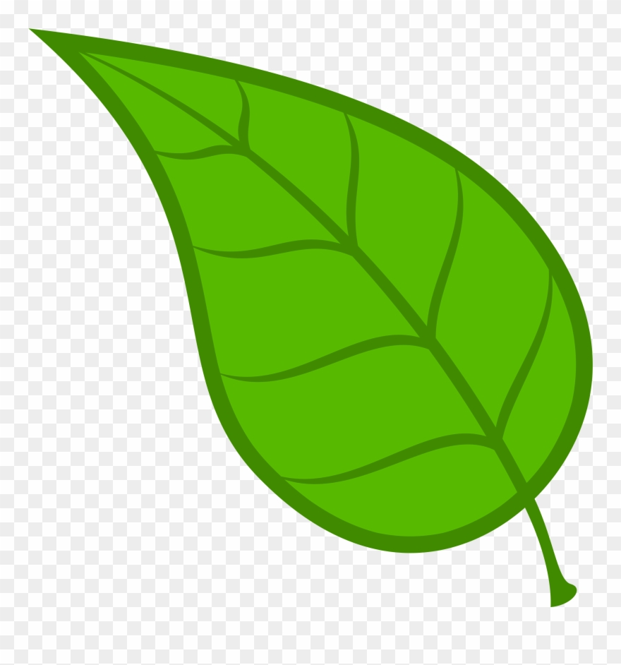 Leaves Leaf Free Download Clip Art On Clipart Library.