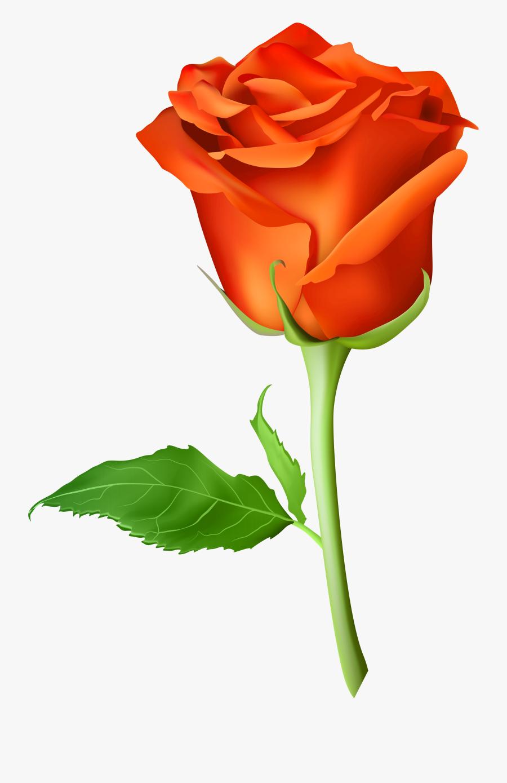 Picsart Rose Png Hd Clipart , Png Download.