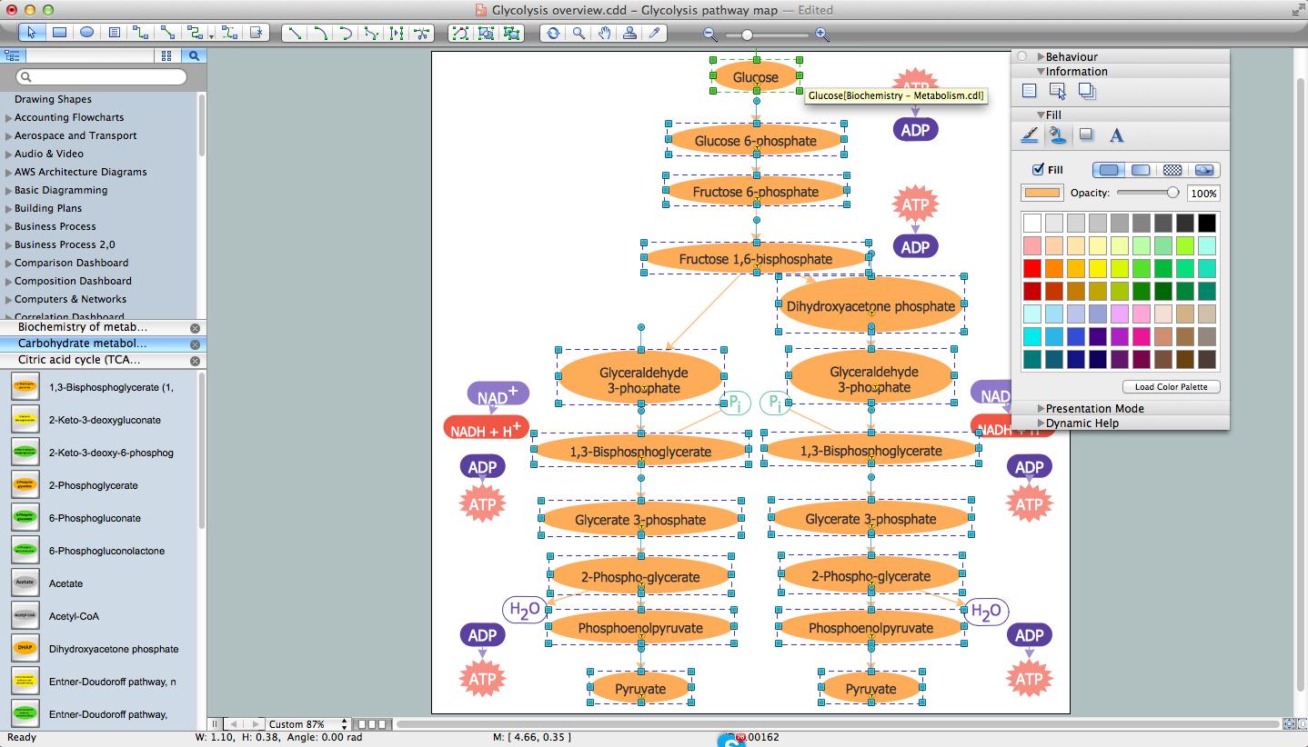 Biology Drawing Software.