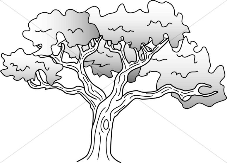 Simple Oak Tree Drawing.