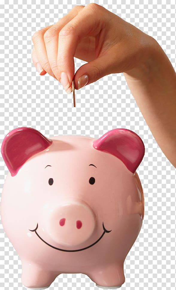 Person about to drop coin on pig coin bank, Piggy bank.