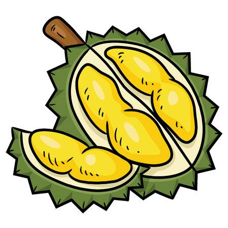 1,639 Durian Stock Illustrations, Cliparts And Royalty Free Durian.