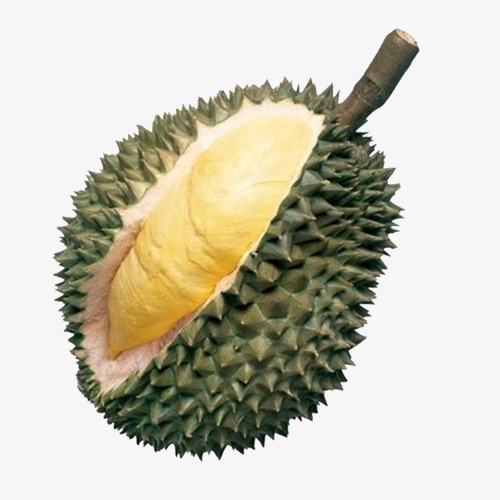 Durian, Thorn, Hard, Yellow PNG Transparent Image and Clipart for.