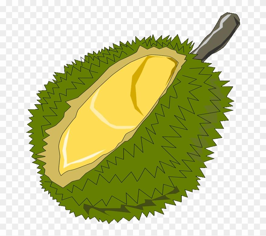 Durian Free Clip Art.