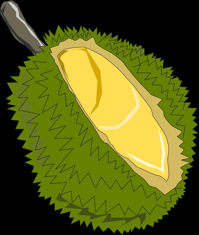 Free Clipart: Durian,Thai Fruit.