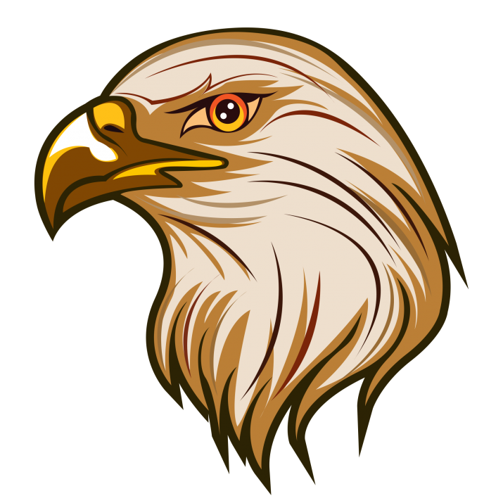 Eagle Clipart PNG Image Free Download searchpng.com.