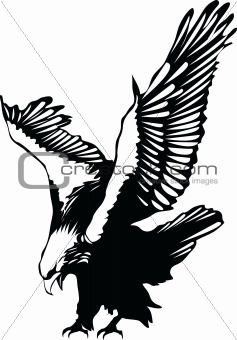 Flying Eagle Silhouette Clipart.