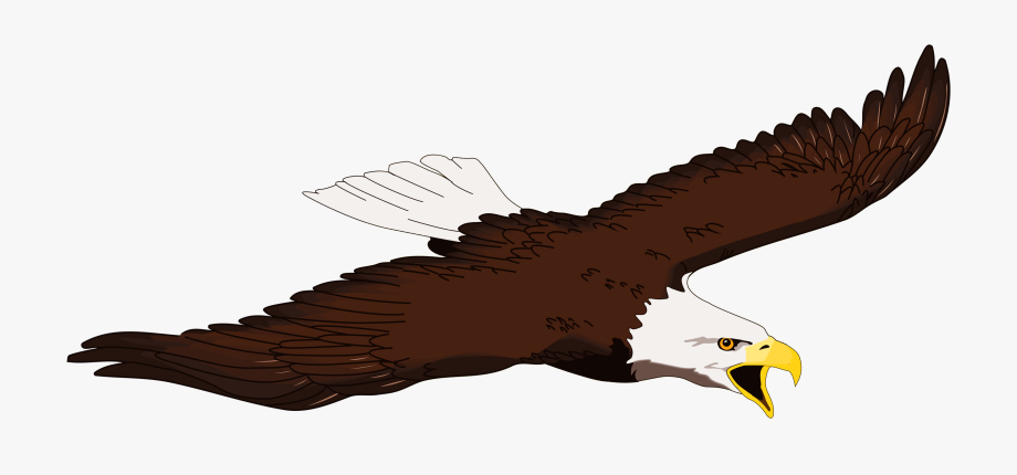 Eagle Clipart Free Clipart.