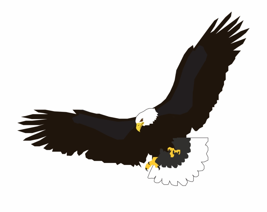 Flying Eagle Png Image, Free Download.