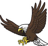 Free Flying Eagle Clipart and Vector Graphics.