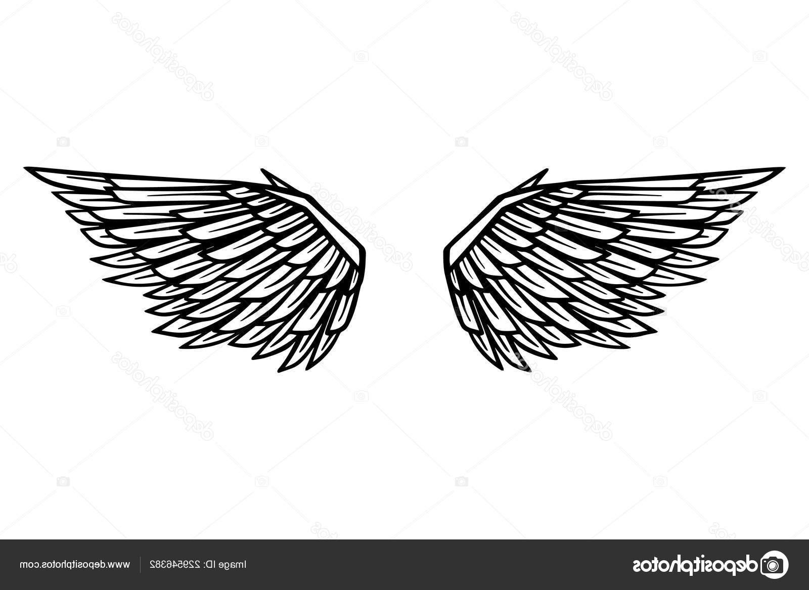 Unique Eagle Wings Drawings Vector File Free » Free Vector.