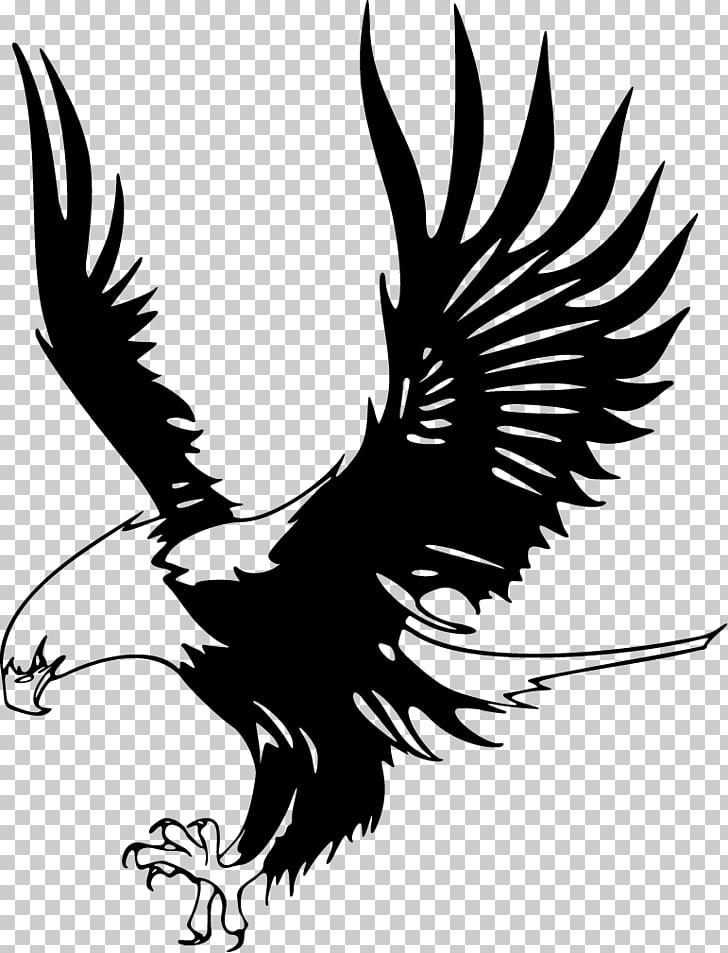 Bald Eagle Just Eagles Black.